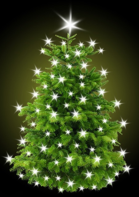 Christmas News | One in Ten Brits Already Have Their Christmas Tree Up | Andover & Villages