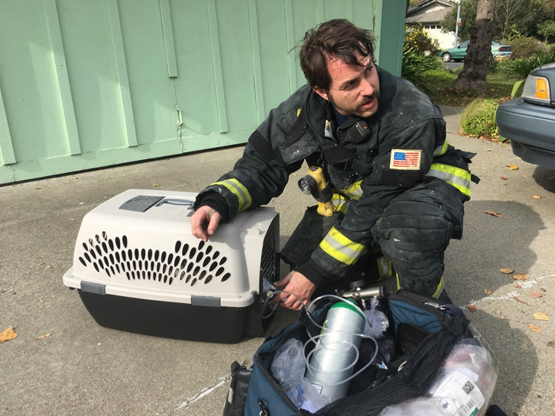 Hampshire News | Pioneering Firefighter Transforms US Animal Rescue | Andover & Villages