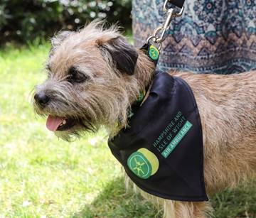 Pet News | Paws in the Park for HIOWAA | Andover & Villages