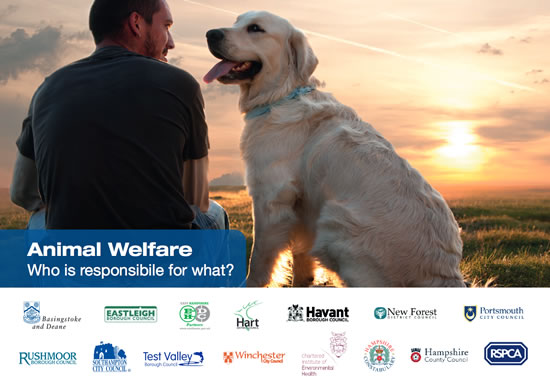 Andover News - Animal Welfare - Who is Responsible for What?