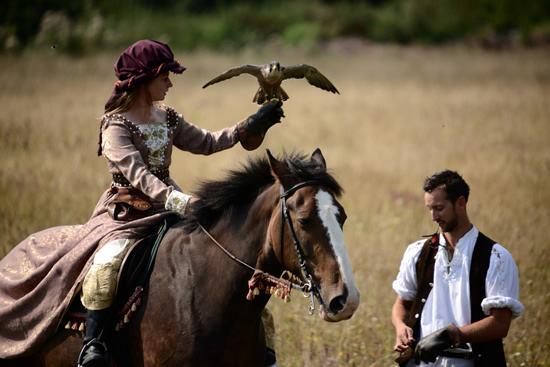 Andover What's On Guide - Star in a Bird of Prey Flying Display at the Hawk Conservancy