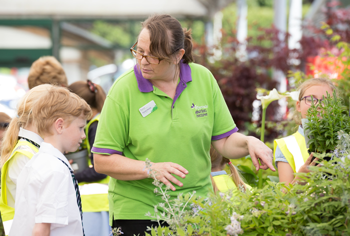 What's On | Kids Get Crafty at Wyevale Garden Centre | Andover & Villages