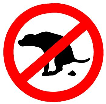 Local News | Test Valley Borough Council Pursue Irresponsible Dog Owners