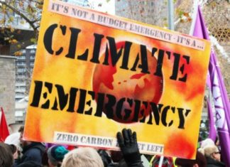 Hampshire declare climate emergency